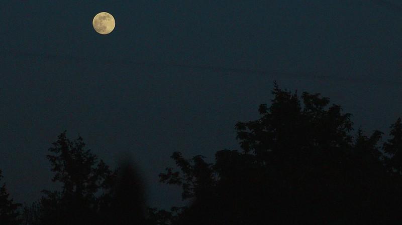 Ciclo lunar influi no sono indepentemente da luz artificial